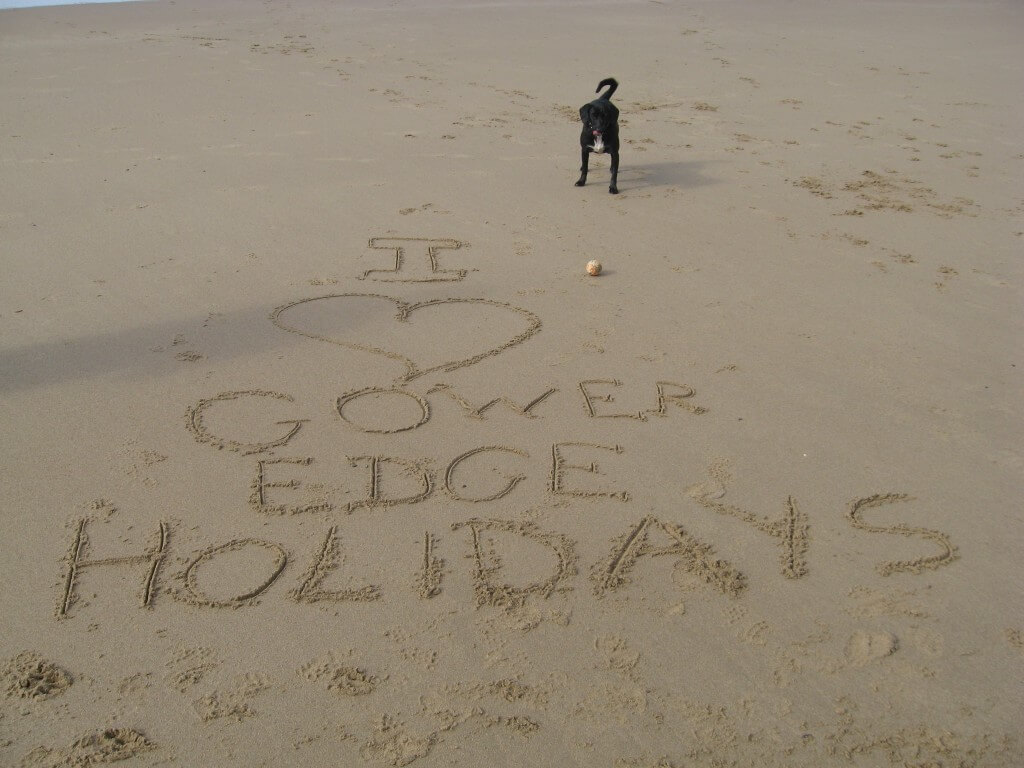 ... and remember multiple pets can enjoy your holiday with you for free!